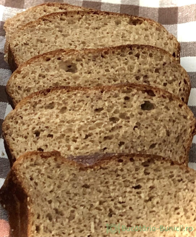 Pâine cu dospire direct in tava